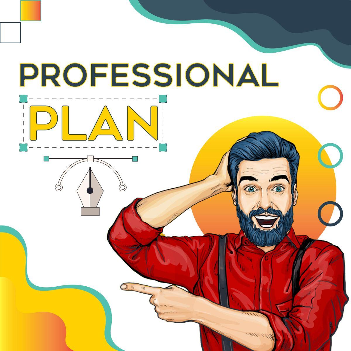 Professional plan